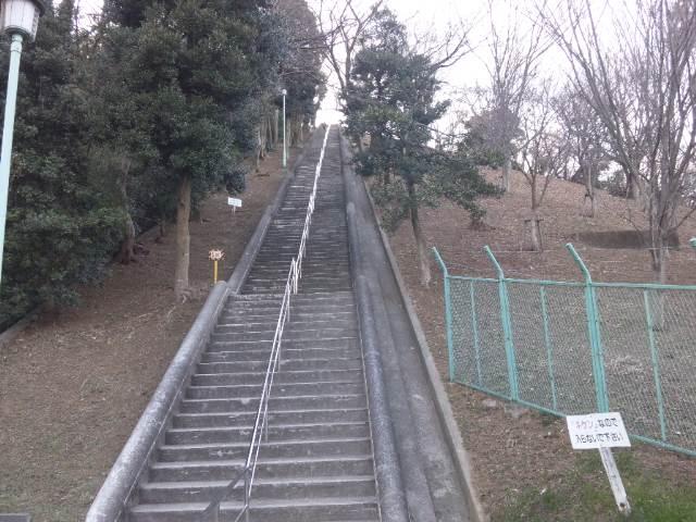 もう富士山トレーニング!