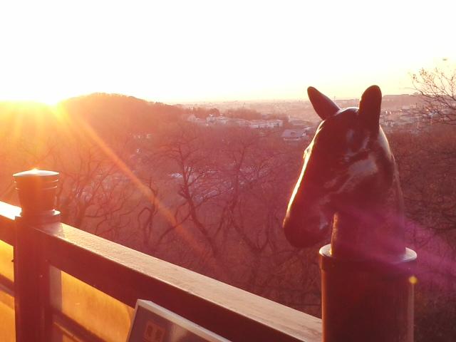 初日の出と馬と〜