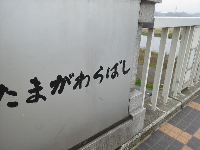 矢野口の橋