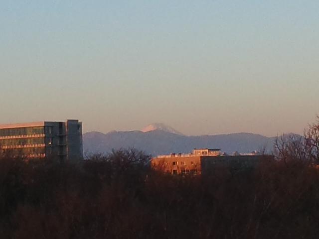 初日の出と富士と蛇