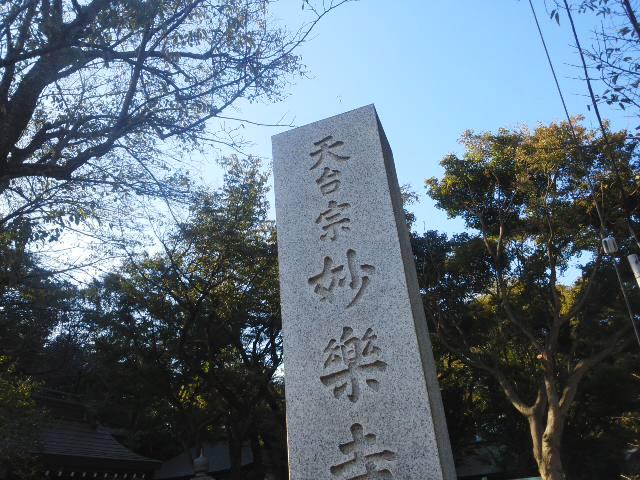 紫陽花寺ラン